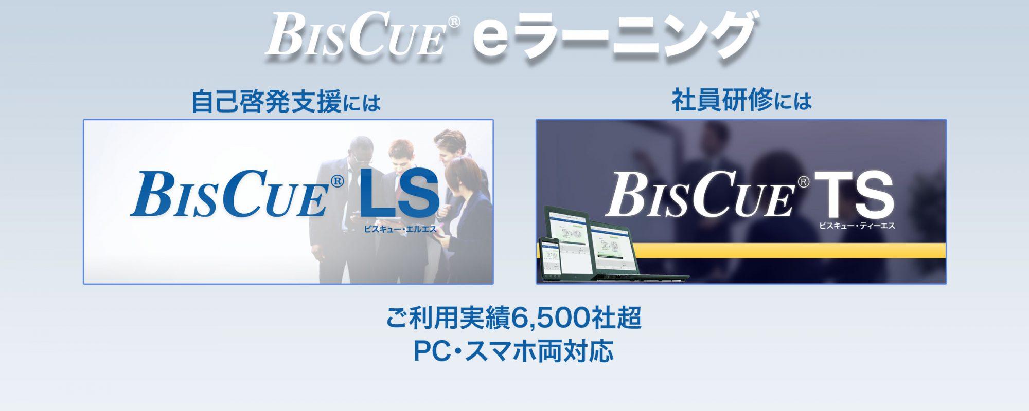 定額制eラーニング BISCUE LS 自己啓発支援に 社員研修に