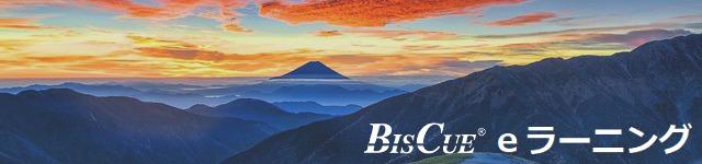 ビジネス日本語の学習にeラーニング